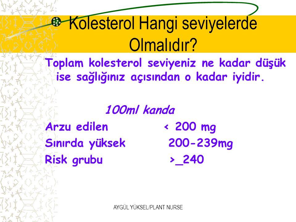 AYGÜL YÜKSEL/PLANT NURSE Kolesterol Hangi seviyelerde Olmalıdır.