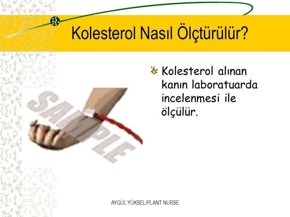 AYGÜL YÜKSEL/PLANT NURSE Kolesterol seviyesini öğrenmenin tek yolu tıbbi bir kontrolden geçmektir.
