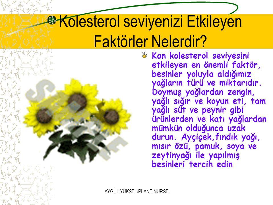 AYGÜL YÜKSEL/PLANT NURSE Kolesterol seviyenizi Etkileyen Faktörler Nelerdir.