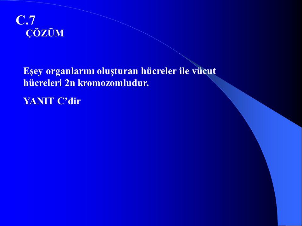 C.7 Eşey organlarını oluşturan hücreler ile vücut hücreleri 2n kromozomludur. YANIT C'dir ÇÖZÜM