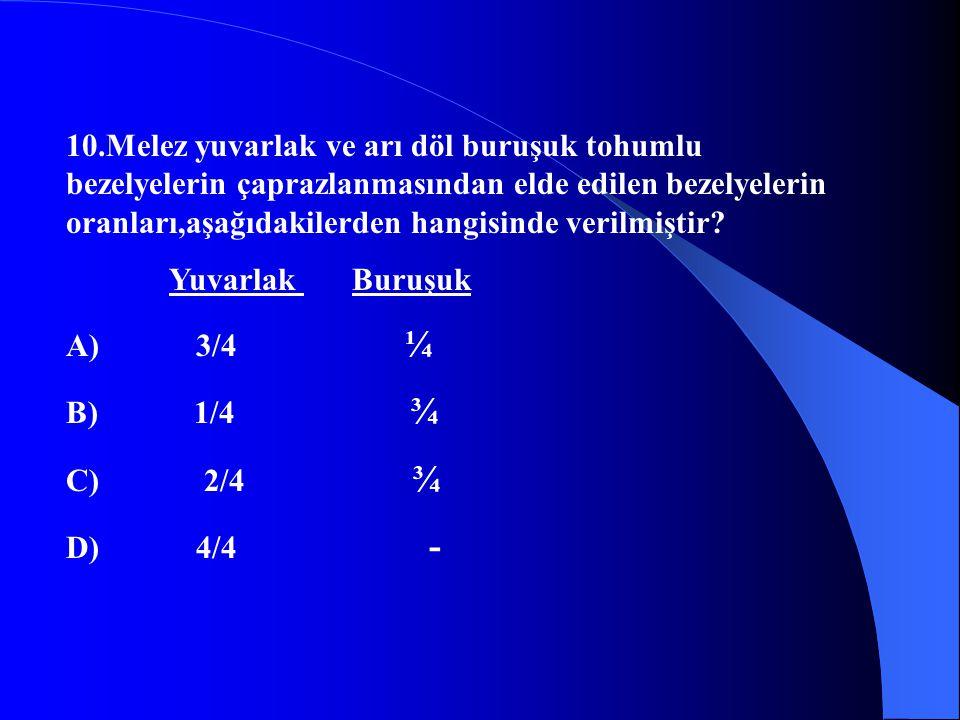 10.Melez yuvarlak ve arı döl buruşuk tohumlu bezelyelerin çaprazlanmasından elde edilen bezelyelerin oranları,aşağıdakilerden hangisinde verilmiştir?