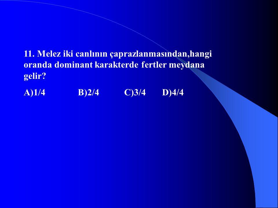 11. Melez iki canlının çaprazlanmasından,hangi oranda dominant karakterde fertler meydana gelir? A)1/4 B)2/4 C)3/4 D)4/4