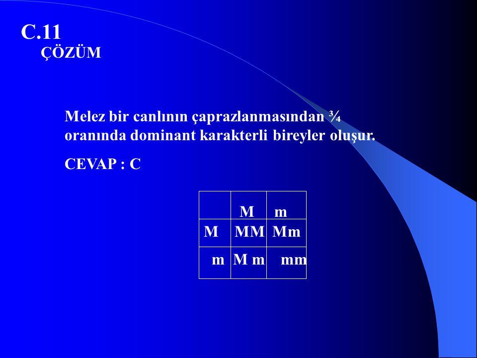 C.11 M m M MM Mm m M m mm Melez bir canlının çaprazlanmasından ¾ oranında dominant karakterli bireyler oluşur. CEVAP : C ÇÖZÜM