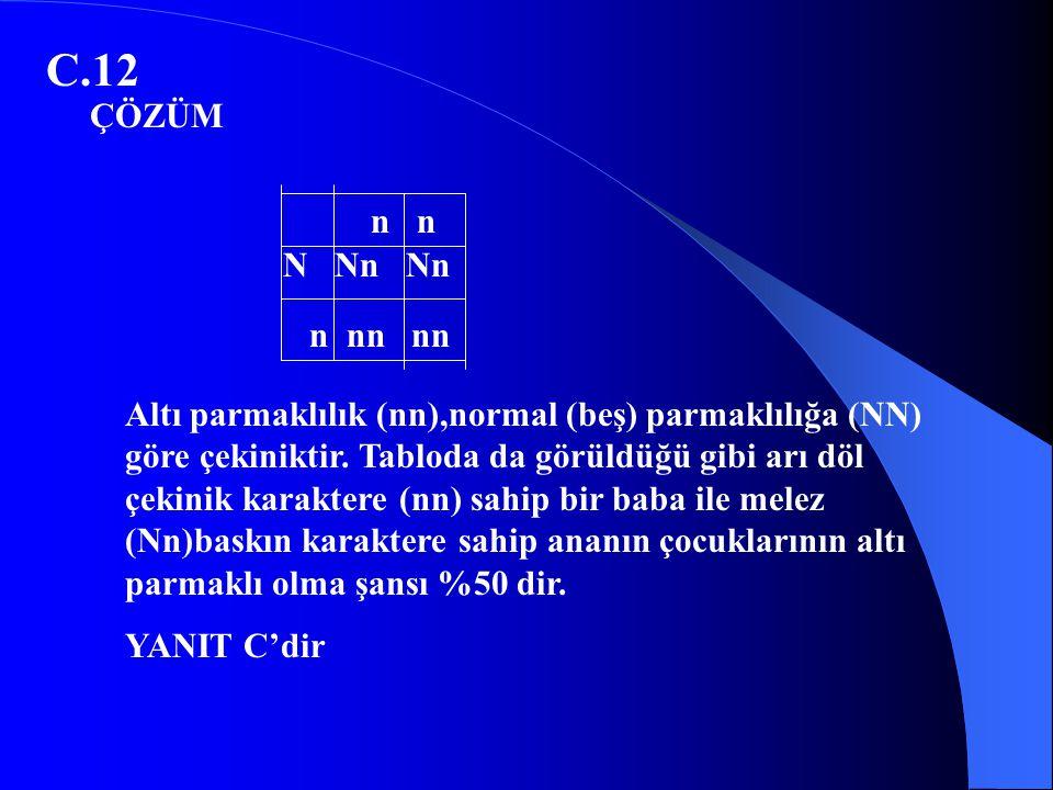 C.12 Altı parmaklılık (nn),normal (beş) parmaklılığa (NN) göre çekiniktir. Tabloda da görüldüğü gibi arı döl çekinik karaktere (nn) sahip bir baba ile