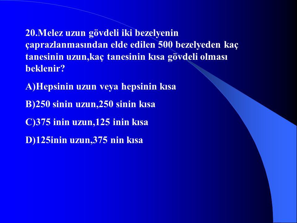20.Melez uzun gövdeli iki bezelyenin çaprazlanmasından elde edilen 500 bezelyeden kaç tanesinin uzun,kaç tanesinin kısa gövdeli olması beklenir? A)Hep