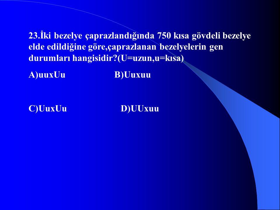 23.İki bezelye çaprazlandığında 750 kısa gövdeli bezelye elde edildiğine göre,çaprazlanan bezelyelerin gen durumları hangisidir?(U=uzun,u=kısa) A)uuxU