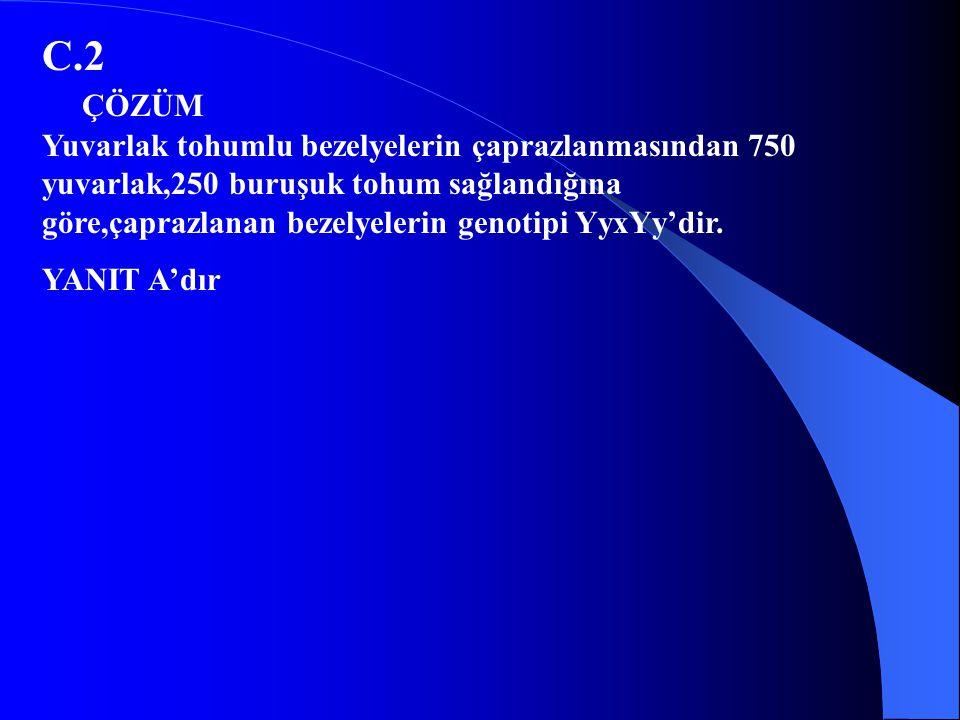 23.İki bezelye çaprazlandığında 750 kısa gövdeli bezelye elde edildiğine göre,çaprazlanan bezelyelerin gen durumları hangisidir?(U=uzun,u=kısa) A)uuxUu B)Uuxuu C)UuxUu D)UUxuu