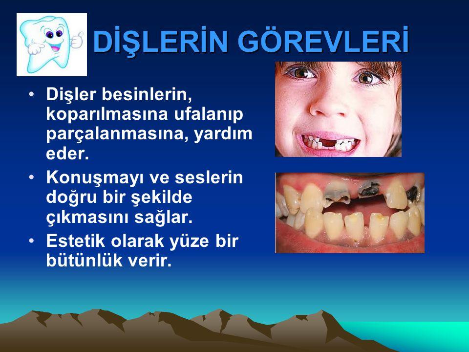 DİŞLERİN GÖREVLERİ DİŞLERİN GÖREVLERİ Dişler besinlerin, koparılmasına ufalanıp parçalanmasına, yardım eder.