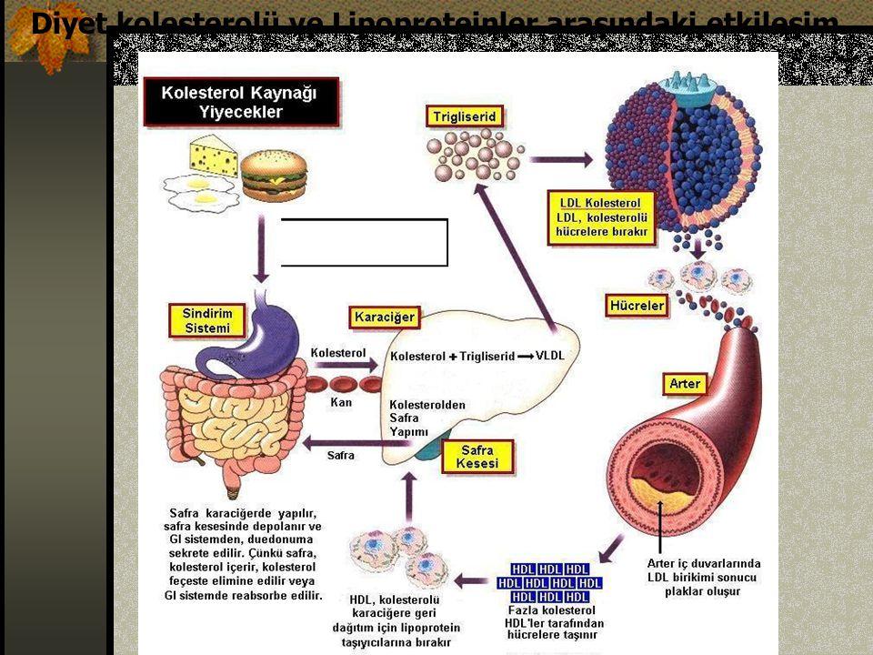 Diyetsel faktörlerin kolesterol düşürücü etkileri FaktörlerLDL-Kolesterolde düşüş (%) SFA enerjinin < %710 Kolesterol 200 mg/gün5 Çözünür posa 5-10 g/gün5 K.Baklagil ceviz,fındık vb.