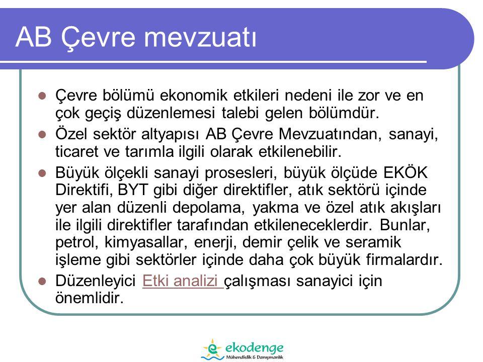 Direktifin Temel Şartları 5.