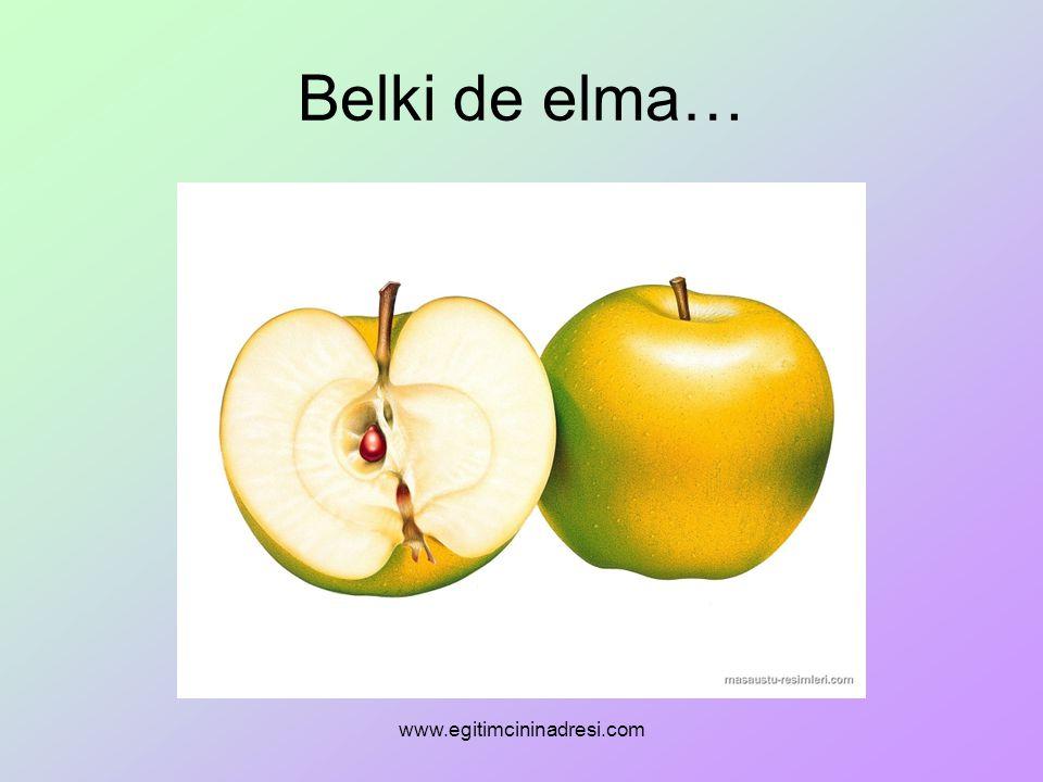Belki de elma… www.egitimcininadresi.com