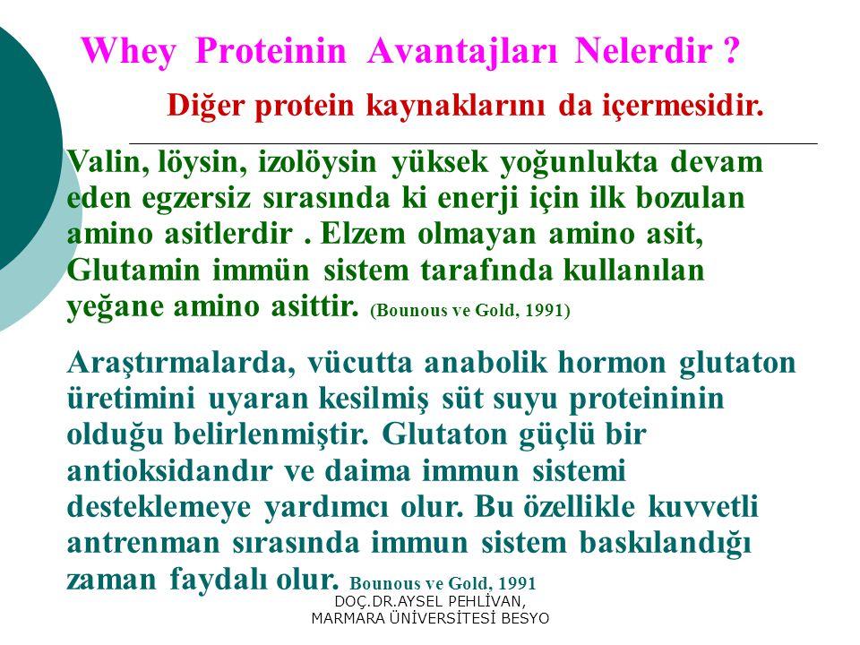 DOÇ.DR.AYSEL PEHLİVAN, MARMARA ÜNİVERSİTESİ BESYO Whey Proteinin Avantajları Nelerdir .