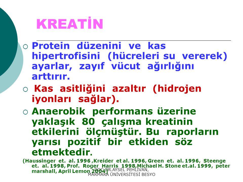 DOÇ.DR.AYSEL PEHLİVAN, MARMARA ÜNİVERSİTESİ BESYO KREATİN  Protein düzenini ve kas hipertrofisini (hücreleri su vererek) ayarlar, zayıf vücut ağırlığını arttırır.