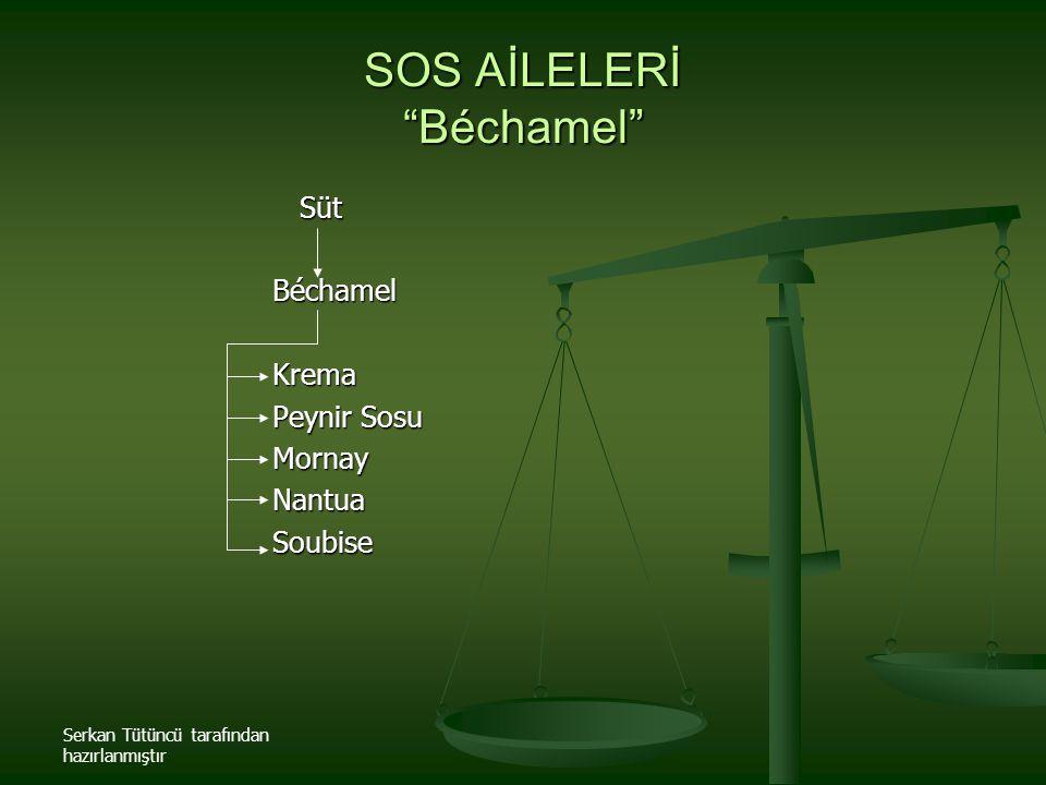 """Serkan Tütüncü tarafından hazırlanmıştır SOS AİLELERİ """"Béchamel"""" Süt SütBéchamelKrema Peynir Sosu MornayNantuaSoubise"""