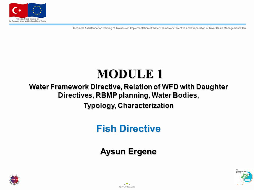 MODULE 1 MODULE 1 Water Framework Directive, Relation of WFD with Daughter Directives, RBMP planning, Water Bodies, Typology, Characterization Fish Directive Aysun Ergene