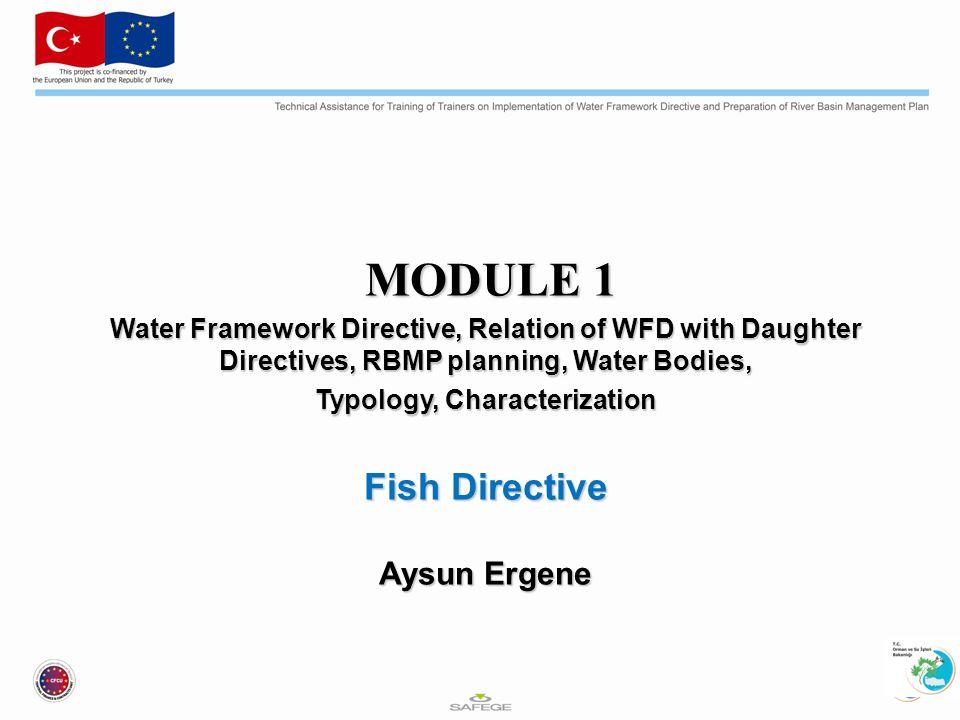 Su Çerçeve Direktifi (SÇD) SÇD, yüzey suları ve yeraltı sularının 2015 yılına kadar iyi ekolojik kaliteye ulaşmasını, kalitenin kötüye gidişinin önlenmesini ve sucul ekosistemlerin sürdürülebilir işleyişini sağlamak için su kaynaklarının sürdürülebilir bir şekilde yönetilmesini hedeflemektedir.