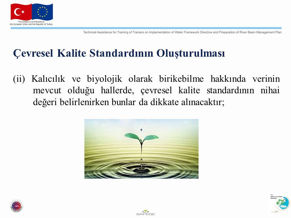 Çevresel Kalite Standardının Oluşturulması (ii) Kalıcılık ve biyolojik olarak birikebilme hakkında verinin mevcut olduğu hallerde, çevresel kalite standardının nihai değeri belirlenirken bunlar da dikkate alınacaktır;