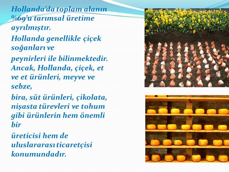 Hollanda'da toplam alanın %69'u tarımsal üretime ayrılmıştır. Hollanda genellikle çiçek soğanları ve peynirleri ile bilinmektedir. Ancak, Hollanda, çi