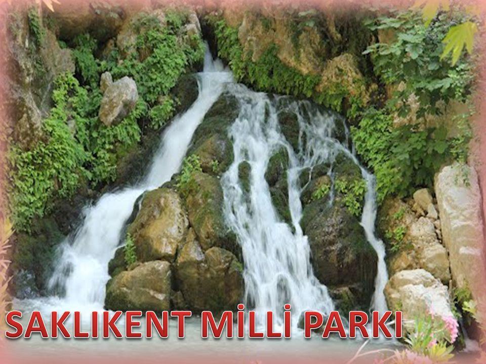 Milli park, bilimsel ve estetik bakımdan, milli ve milletlerarası ender bulunan tabii ve kültürel kaynak değerleri ile koruma, dinlenme ve turizm alanlarına sahip tabiat parçalarıdır.