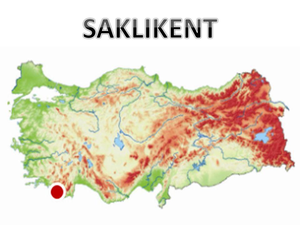 1990'lı yılların başında dağdan yaklaşık 8 ton bitki toplanarak yurt dışına satılabilmiştir.