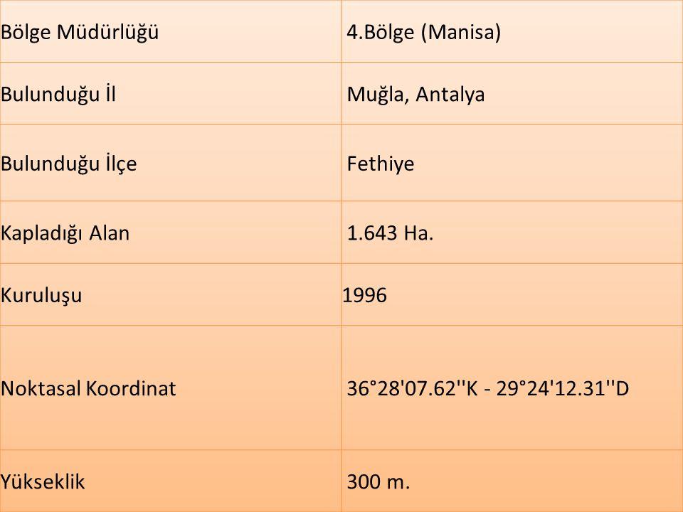 Milli Park Sahasının 87.0 Ha'sı Muğla İli sınırları içerisinde, 1556 Ha'sı Antalya İli sınırları içerisinde kalmaktadır.Toplam alanı 1.643 ha dır.