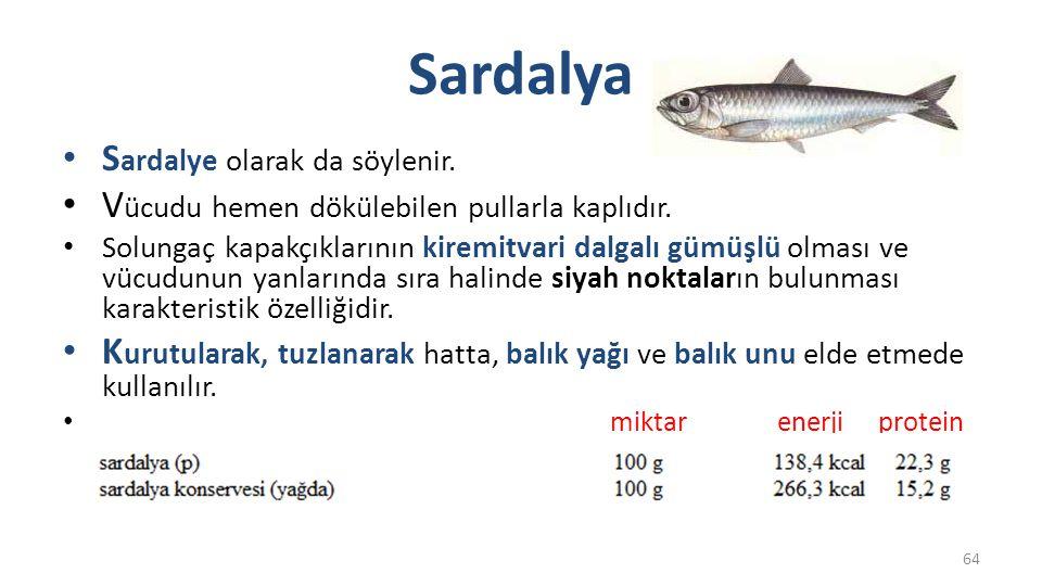 Çipura Ç oğunlukla çupra olarak telaffuz edilir.Ege ve Akdeniz'de bol; Marmara'da seyrek çıkar.
