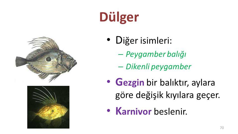 Orfoz E ge ve Akdeniz balığıdır. K arnivor beslenir. 7 0 cm ve 40 kg'a kadar çıkabilir. 71