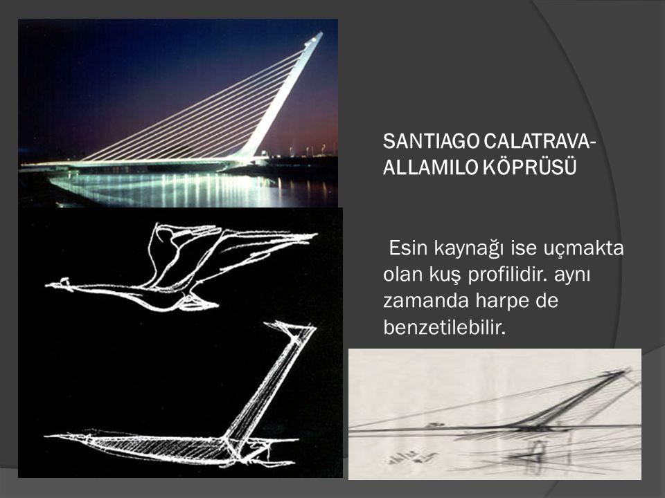 SANTIAGO CALATRAVA- ALLAMILO KÖPRÜSÜ Esin kaynağı ise uçmakta olan kuş profilidir. aynı zamanda harpe de benzetilebilir.