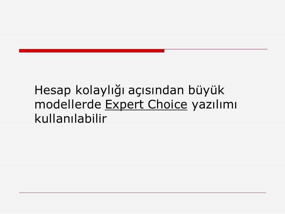 Hesap kolaylığı açısından büyük modellerde Expert Choice yazılımı kullanılabilir
