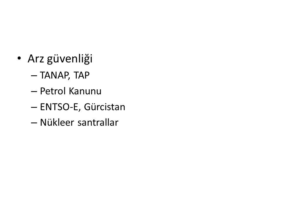 Arz güvenliği – TANAP, TAP – Petrol Kanunu – ENTSO-E, Gürcistan – Nükleer santrallar