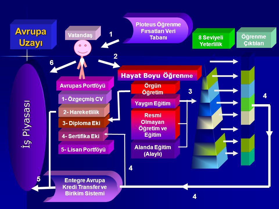 Avrupa Uzayı Ploteus Öğrenme Fırsatları Veri Tabanı 5- Lisan Portföyü 4- Sertifika Eki 3- Diploma Eki 2- Hareketlilik 1- Özgeçmiş CV Avrupas Portföyü Vatandaş Entegre Avrupa Kredi Transfer ve Birikim Sistemi Öğrenme Çıktıları Alanda Eğitim (Alaylı) Resmi Olmayan Öğretim ve Eğitim Yaygın Eğitim Örgün Öğretim Hayat Boyu Öğren me 1 2 3 4 4 5 6 İş Piyasası 8 Seviyeli Yeterlilik 4