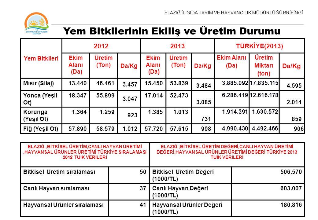 ELAZIĞ İL GIDA TARIM VE HAYVANCILIK MÜDÜRLÜĞÜ BRİFİNGİ Yem Bitkileri 20122013TÜRKİYE(2013) Ekim Alanı (Da) Üretim (Ton) Da/Kg Ekim Alanı (Da) Üretim (Ton) Da/Kg Ekim Alanı (Da) Üretim Miktarı (ton) Da/Kg Mısır (Silaj)13.44046.461 3.457 15.45053.839 3.484 3.885.09217.835.115 4.595 Yonca (Yeşil Ot) 18.34755.899 3.047 17.01452.473 3.085 6.286.41912.616.178 2.014 Korunga (Yeşil Ot) 1.3641.259 923 1.3851.013 731 1.914.3911.630.572 859 Fiğ (Yeşil Ot)57.89058.5791.01257.72057.615998 4.990.4304.492.466 906 Yem Bitkilerinin Ekiliş ve Üretim Durumu ELAZIĞ ;BİTKİSEL ÜRETİM,CANLI HAYVAN ÜRETİMİ,HAYVANSAL ÜRÜNLER ÜRETİMİ TÜRKİYE SIRALAMASI 2012 TUİK VERİLERİ ELAZIĞ ;BİTKİSEL ÜRETİM DEĞERİ,CANLI HAYVAN ÜRETİMİ DEĞERİ,HAYVANSAL ÜRÜNLER ÜRETİMİ DEĞERİ TÜRKİYE 2013 TUİK VERİLERİ Bitkisel Üretim sıralaması50Bitkisel Üretim Değeri (1000/TL) 506.570 Canlı Hayvan sıralaması37Canlı Hayvan Değeri (1000/TL) 603.007 Hayvansal Ürünler sıralaması41Hayvansal Ürünler Değeri (1000/TL) 180.816