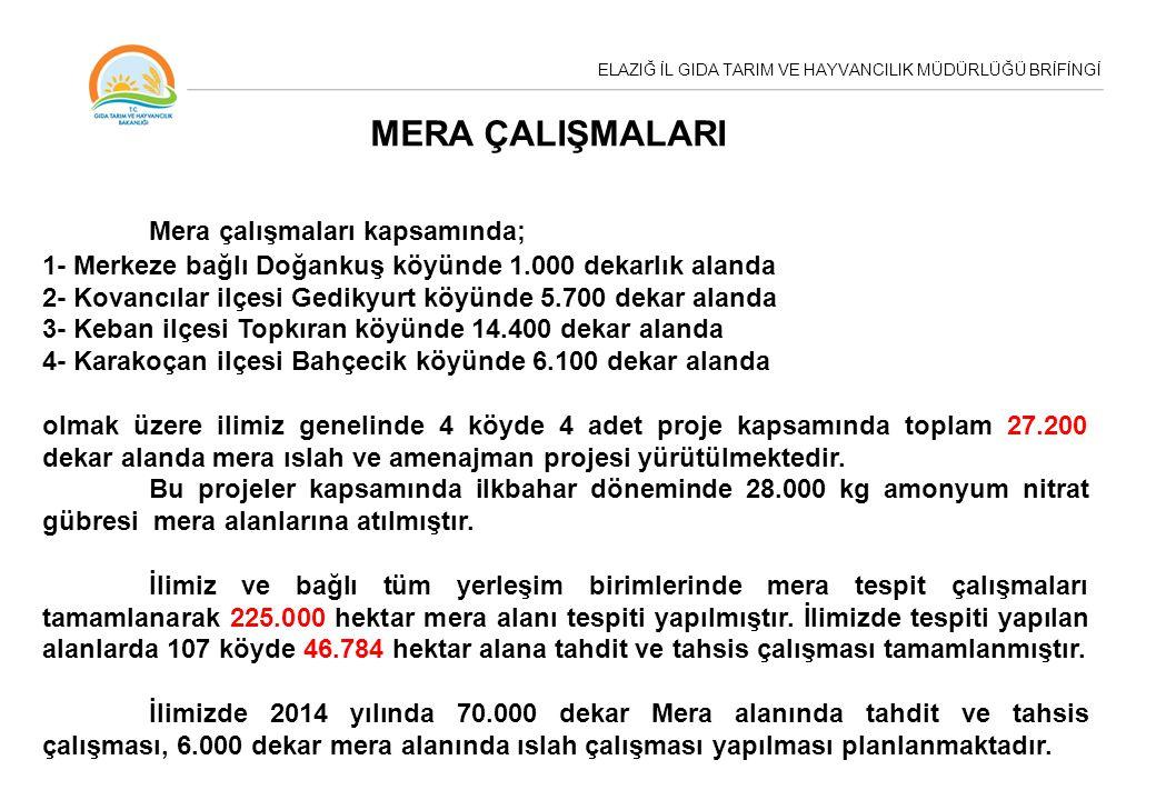 MERA ÇALIŞMALARI Mera çalışmaları kapsamında; 1- Merkeze bağlı Doğankuş köyünde 1.000 dekarlık alanda 2- Kovancılar ilçesi Gedikyurt köyünde 5.700 dekar alanda 3- Keban ilçesi Topkıran köyünde 14.400 dekar alanda 4- Karakoçan ilçesi Bahçecik köyünde 6.100 dekar alanda olmak üzere ilimiz genelinde 4 köyde 4 adet proje kapsamında toplam 27.200 dekar alanda mera ıslah ve amenajman projesi yürütülmektedir.