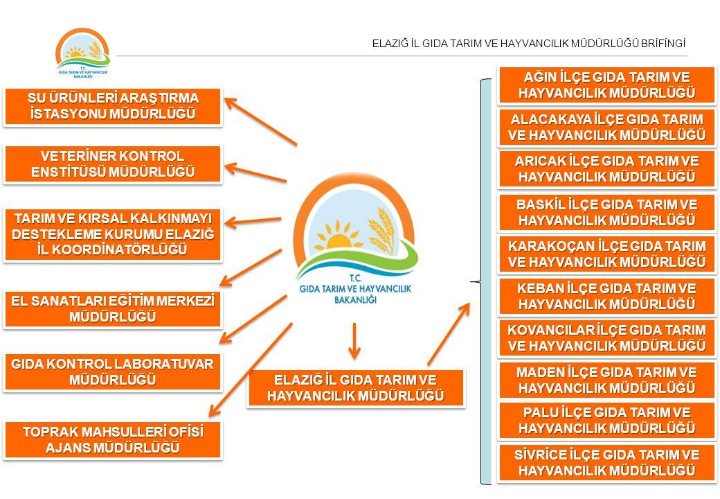 ELAZIĞ İL GIDA TARIM VE HAYVANCILIK MÜDÜRLÜĞÜ BRİFİNGİ DENETİM EKİPLERİMİZ Gıda ve Yem Denetim Ekibi Sayısı5 Kontrol Görevlisi Sayısı18 Kontrol Görevlisi Yardımcısı Sayısı4 İŞLETME SAYISIDENETİM SAYISI Gıda Üretim Yerleri 635555 Gıda Satış Yerleri 2441805 Toplu Tüketim Yerleri 1529569 Yem İşletmeleri-Yem Bayileri 166209 2014 Yılı İşletme ve Denetim Sayıları 2014 Yılı Kasım ve Aralık Ayları Hariç