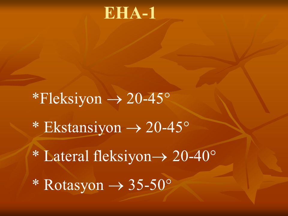 EHA-1 *Fleksiyon  20-45° * Ekstansiyon  20-45° * Lateral fleksiyon  20-40° * Rotasyon  35-50° hassasiyet aranabilir.