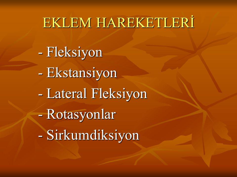 EKLEM HAREKETLERİ - Fleksiyon - Ekstansiyon - Ekstansiyon - Lateral Fleksiyon - Lateral Fleksiyon - Rotasyonlar - Rotasyonlar - Sirkumdiksiyon