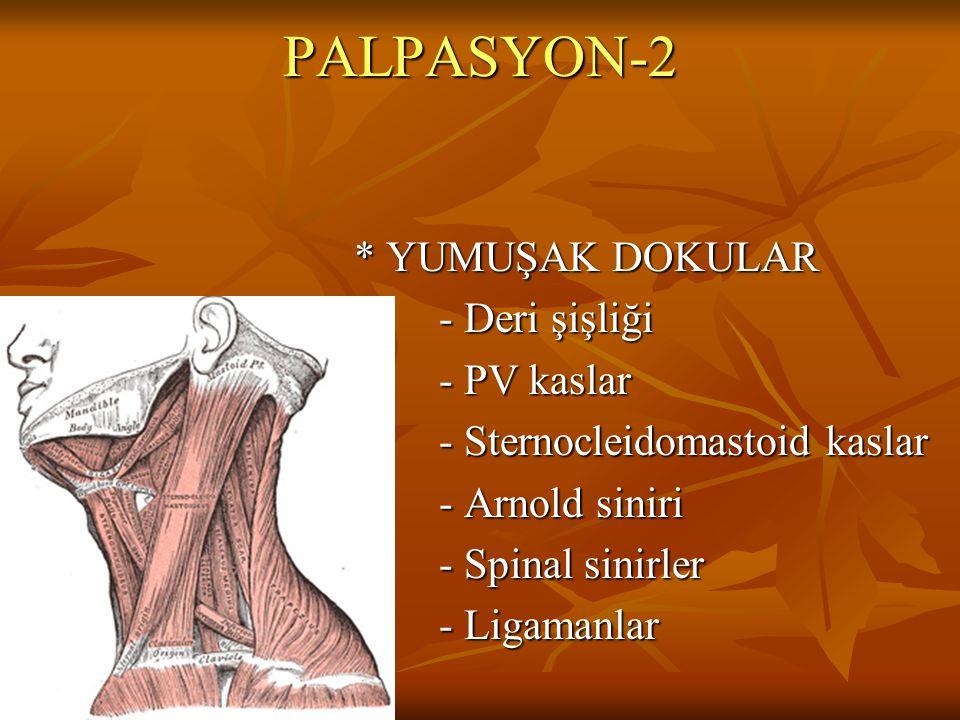 PALPASYON-3 * KOMŞU YAPILAR - Arter nabzı - Arter nabzı - Lenf bezleri - Lenf bezleri - Tiroid bezi - Tiroid bezi - Trakea - Trakea - Diğer yapılar - Diğer yapılar