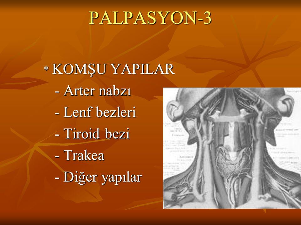 PALPASYON-3 * KOMŞU YAPILAR - Arter nabzı - Arter nabzı - Lenf bezleri - Lenf bezleri - Tiroid bezi - Tiroid bezi - Trakea - Trakea - Diğer yapılar -