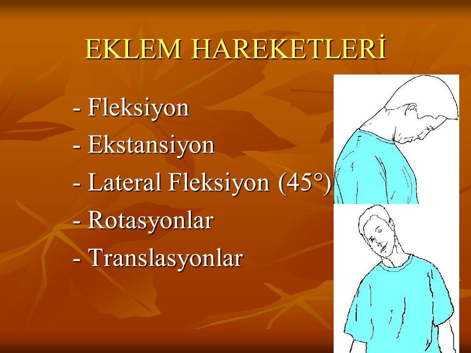 EKLEM HAREKETLERİ - Fleksiyon - Fleksiyon - Ekstansiyon - Ekstansiyon - Lateral Fleksiyon (45°) - Lateral Fleksiyon (45°) - Rotasyonlar - Rotasyonlar