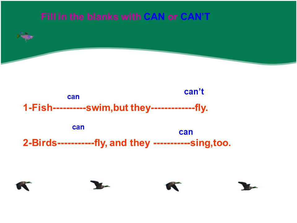 Fill in the blanks with CAN or CAN'T 1-Fish----------swim,but they-------------fly.