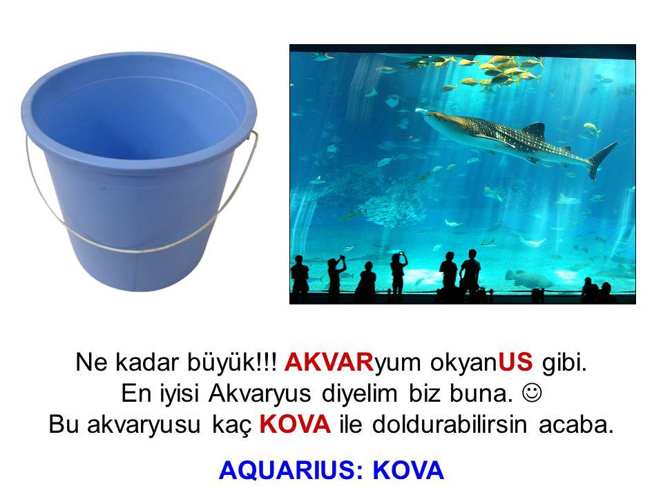Ne kadar büyük!!! AKVARyum okyanUS gibi. En iyisi Akvaryus diyelim biz buna. Bu akvaryusu kaç KOVA ile doldurabilirsin acaba. AQUARIUS: KOVA
