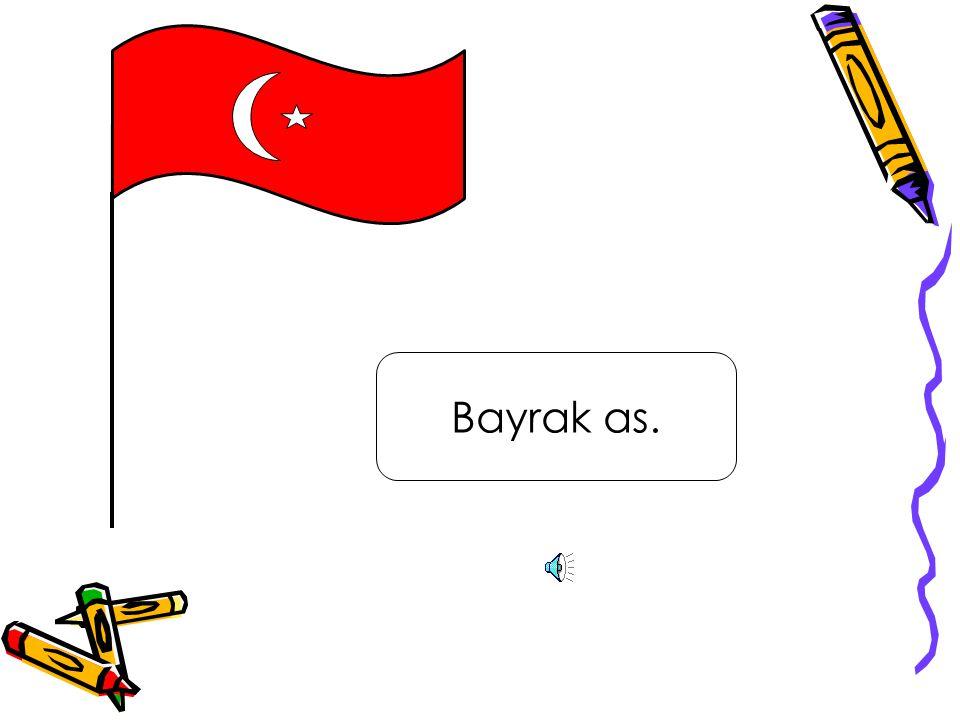 Vatanım Türkiye.