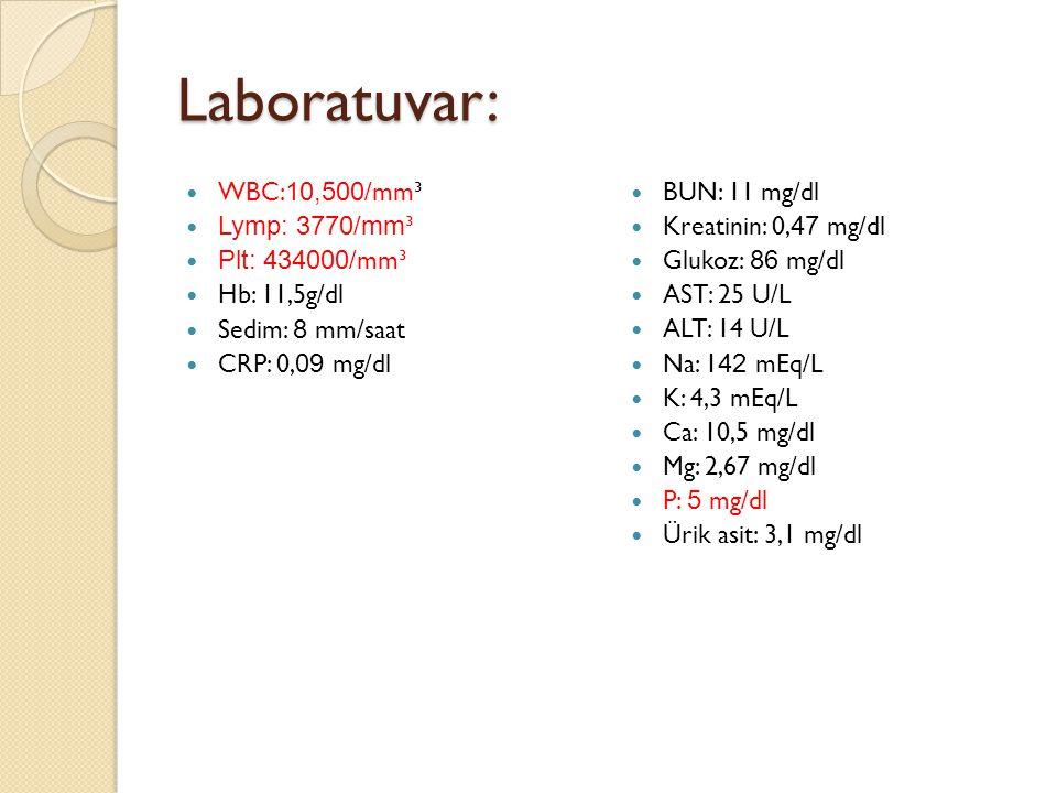 Laboratuvar: WBC: 10,500 /mm³ Lymp: 3770/mm ³ Plt: 434000 /mm³ Hb: 11,5g/dl Sedim: 8 mm/saat CRP: 0, 09 mg/dl BUN: 11 mg/dl Kreatinin: 0, 47 mg/dl Glukoz: 86 mg/dl AST: 25 U/L ALT: 14 U/L Na: 1 42 mEq/L K: 4,3 mEq/L Ca: 10,5 mg/dl Mg: 2,67 mg/dl P: 5 mg/dl Ürik asit: 3,1 mg/dl