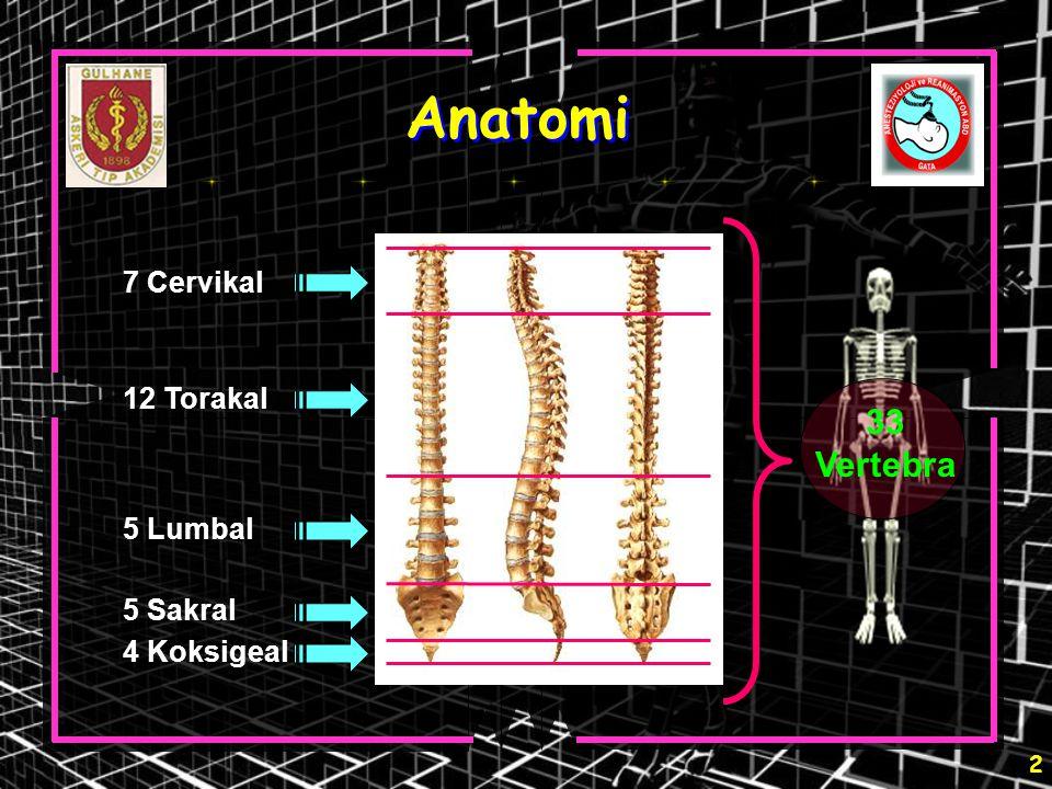 3 Anatomi L 3 - 4 L 2 L 1- 5 İnterlaminal foramen Vertebral foramen Spinöz çıkıntı Transvers çıkıntı İntervertebral foramen Pedikül Lamina İntervertebral disk Vertebral korpus