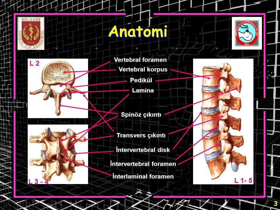 44 Epidural nöroplasti Sakral hiyatusun saptanması - II Floroskopi (Sakrumun lateral görünümü) Kontrast madde RK iğnesi Sakral hiatus