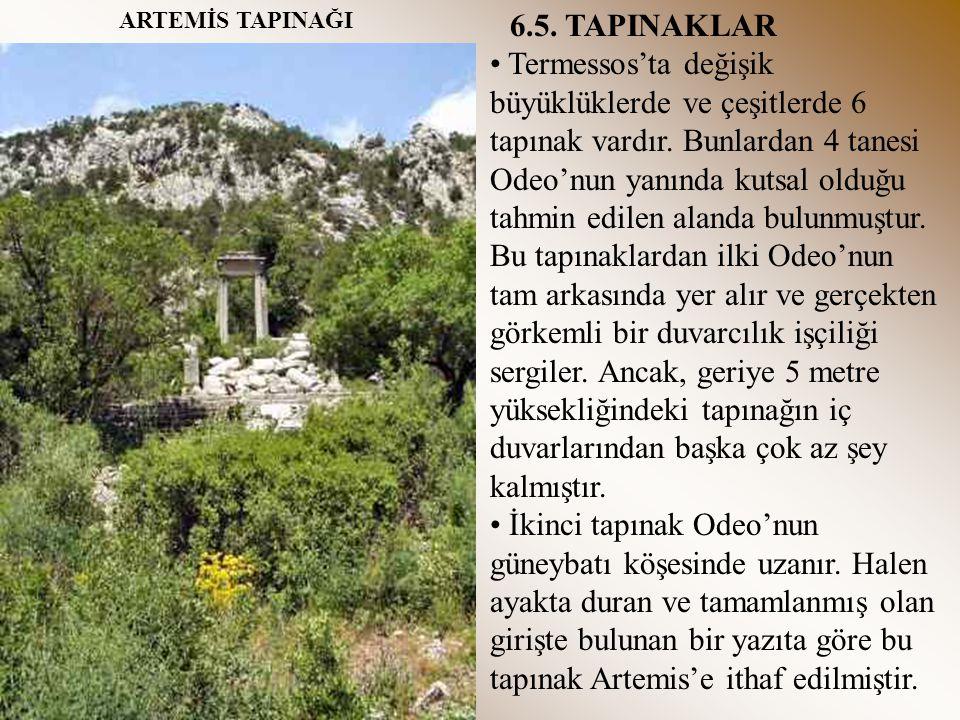 6.5. TAPINAKLAR Termessos'ta değişik büyüklüklerde ve çeşitlerde 6 tapınak vardır. Bunlardan 4 tanesi Odeo'nun yanında kutsal olduğu tahmin edilen ala