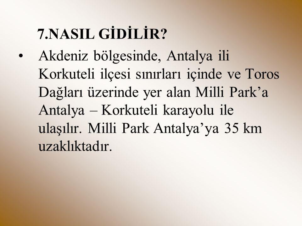 7.NASIL GİDİLİR? Akdeniz bölgesinde, Antalya ili Korkuteli ilçesi sınırları içinde ve Toros Dağları üzerinde yer alan Milli Park'a Antalya – Korkuteli