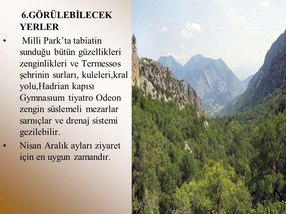 6.GÖRÜLEBİLECEK YERLER Milli Park'ta tabiatin sunduğu bütün güzellikleri zenginlikleri ve Termessos şehrinin surları, kuleleri,kral yolu,Hadrian kapıs