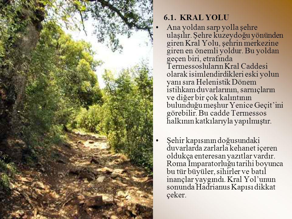 6.2.AGORA Resmi binaların bulunduğu Termessos şehri, iç duvarların az ilerisindeki düz arazide yer alır.