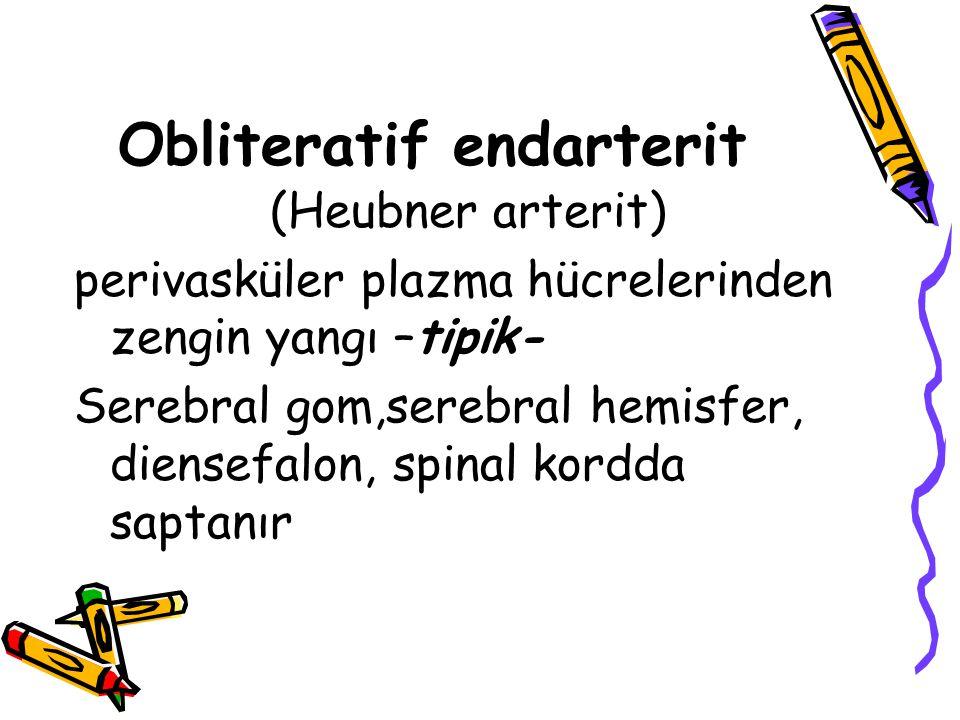 Obliteratif endarterit (Heubner arterit) perivasküler plazma hücrelerinden zengin yangı –tipik- Serebral gom,serebral hemisfer, diensefalon, spinal ko